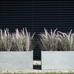 Plastične tegle za cvijeće kao popularan izbor